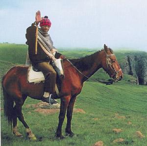 Mosotho horseman